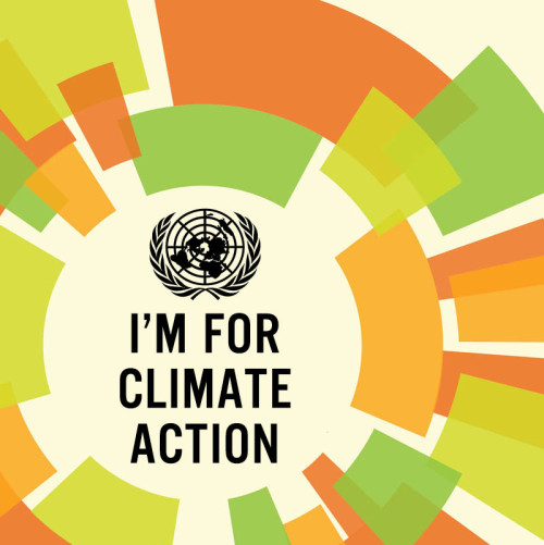 UN Climate Summit Badge